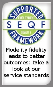 link to page about model fidelity standards